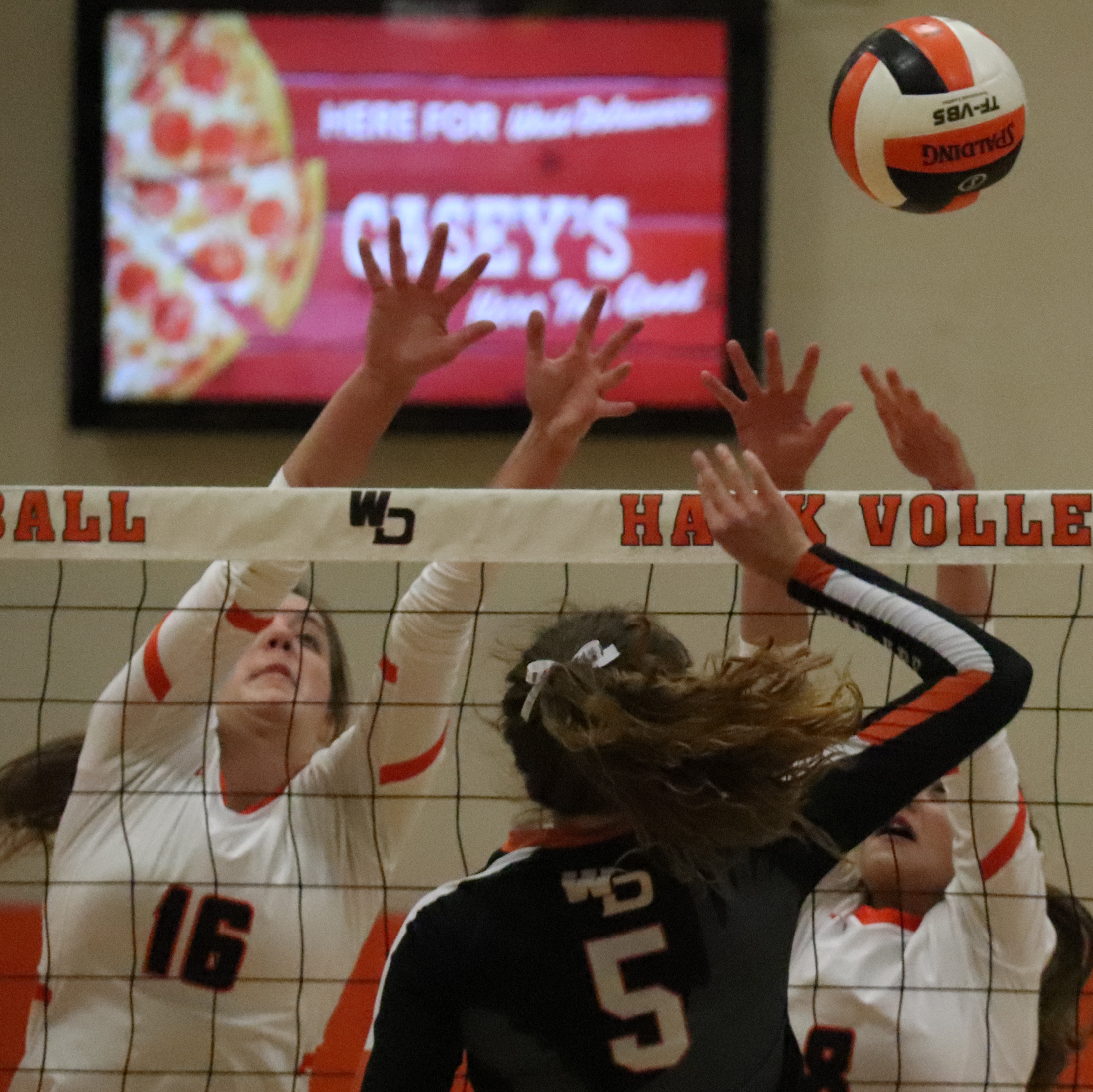 Comets fall  to No. 5-ranked Hawks in volleyball regional final